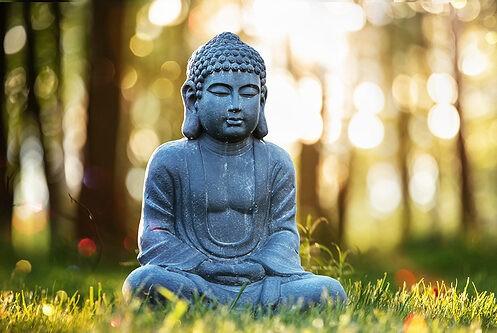 buddha in nature private label skin care