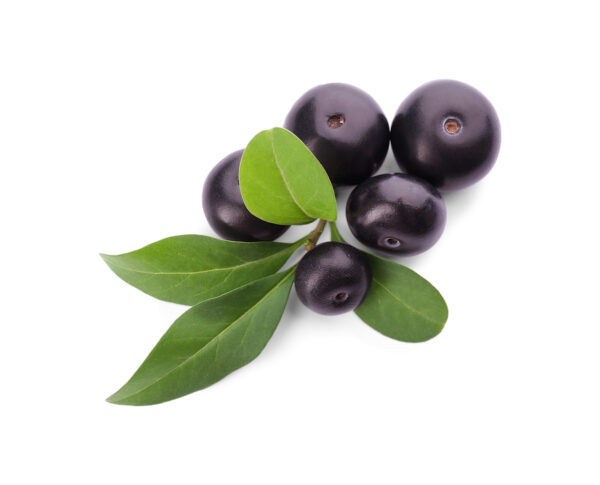 acai berries with leaves private label skin care