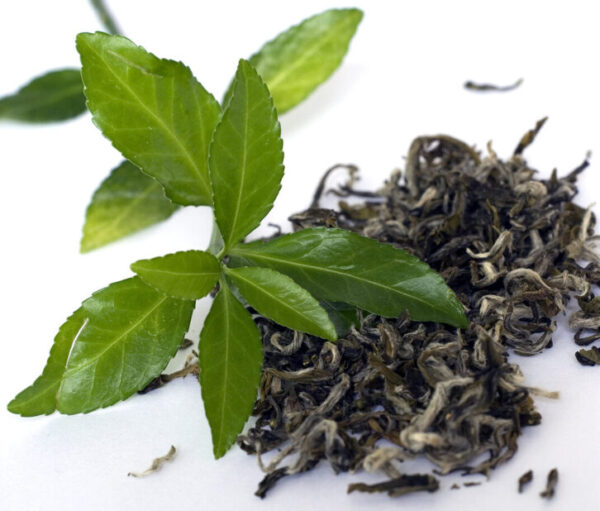 private label green tea leaves